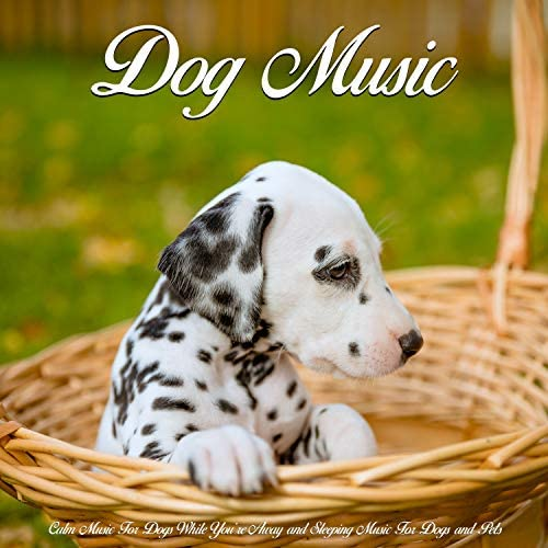 Dog Music, Music for Dog's Ears & Sleeping Music For Dogs
