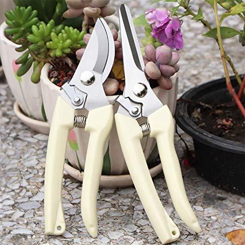 Nistere YOROO Ergoline Premium Gartenscheren Set für Haus, Balkon und Patio. Enthält Ergotrim Blumenschere Ergocut Rosenschere. Ergonomish, Robust, Scharf