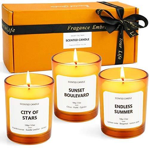 LA BELLEFÉE Velas Perfumadas 100% Cera de Soja, Aromáticas Aromaterapia Aroma Regalo para Cumpleaños Día de San Valentín, Baño Yoga Vaso(3 * 70g)
