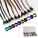 DiCUNO 100 pezzi (10 colori × 10 pezzi) Diodi LED Pre-cablato da 5 mm Luce 12V 24cm Pre W...