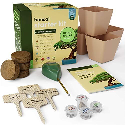 CRZJ Bonsai Tree Indoor Starter Kit, Grow 4 Bonsai Trees, Regali per giardinieri Adulti, Kit di Coltivazione Completo