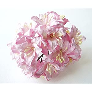 ICRAFY 25 pcs. Gardenia Mulberry Paper Flower Artificial Craft Scrapbook Wedding Supply Accessory DIY, Pink Edge White Color, Size 1″