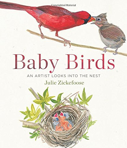 Price comparison product image Baby Birds: An Artist Looks into the Nest