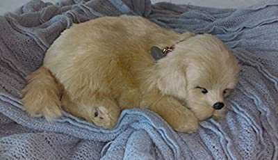 Breathable Golden Puppy Companion Pet for People with Memory Loss from Aging and Caregivers