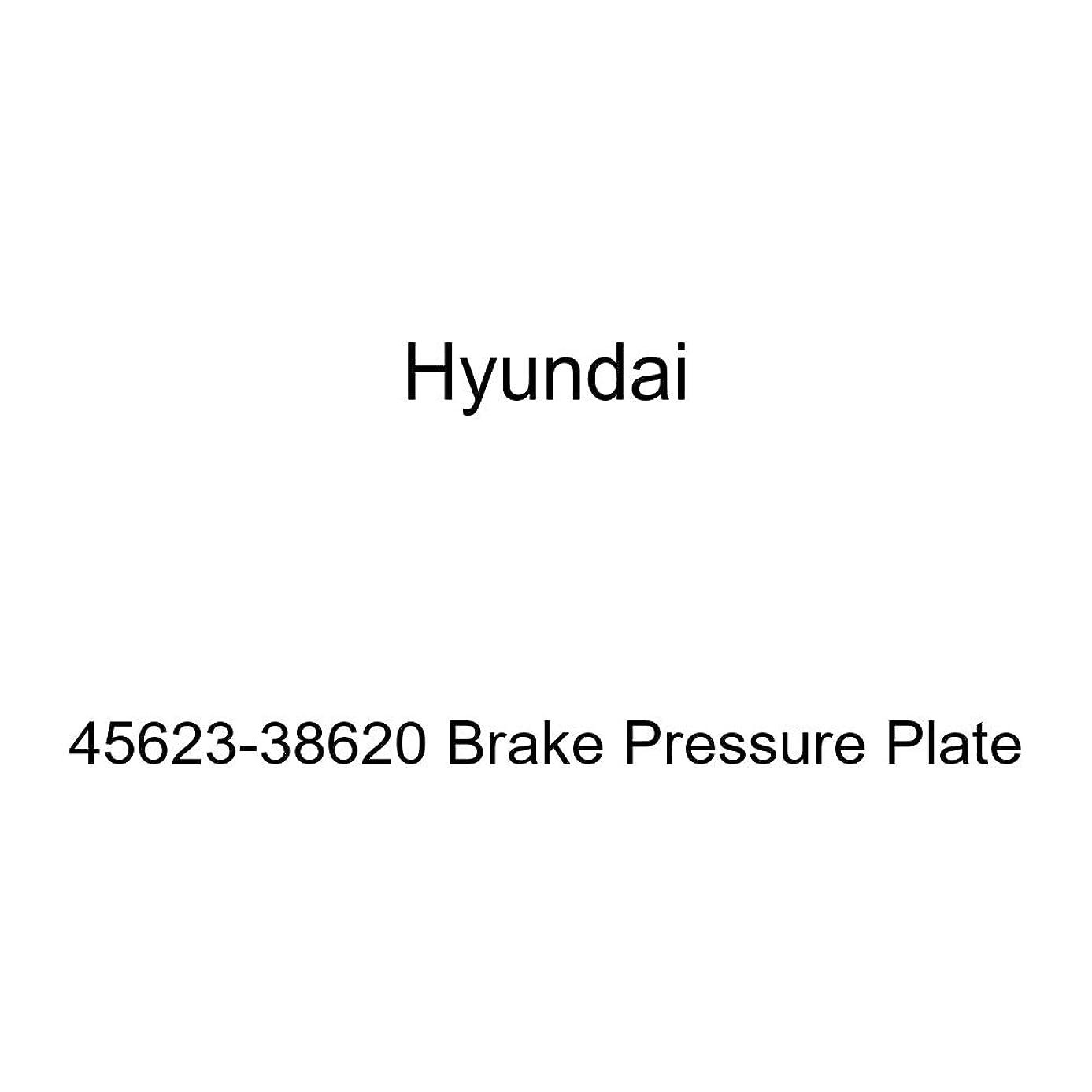 Genuine Hyundai 45623-38620 Brake Pressure Plate