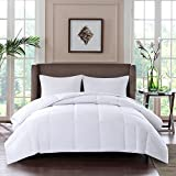 Sleep Philosophy Thinsulate Fibers 3M Scotchgard Moister Wicking Down Alternative Comforter with 100% 300TC Cotton Sateen Cover, Full/Queen, Year Round Warm
