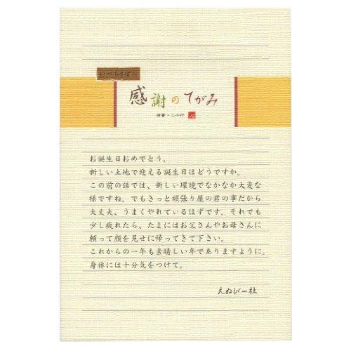 伝えるきもち B5便箋【感謝のてがみ/横書き】 5300202