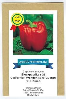 Das wohl beliebteste milde süße Paprika - Californian wonder - 30 Samen