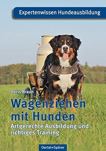 Wagenziehen mit Hunden: Artgerechte Ausbildung und richtiges Training