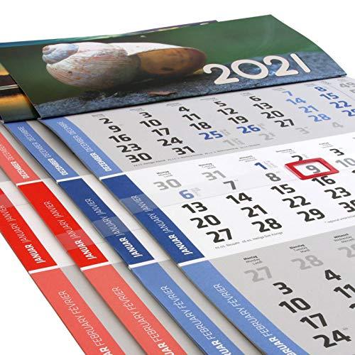 1 Stück Motiv Steg 3 Monats Wandkalender 2021 Kalender Officekalender Bürokalender Wandplaner