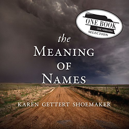 The Meaning of Names audiobook cover art