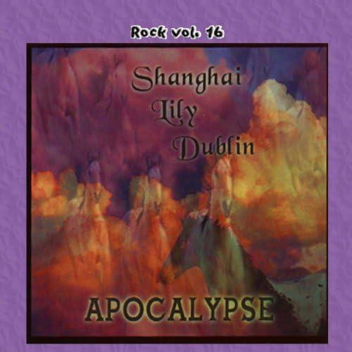 Shanghai Lily Dublin