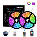 Hedynshine 33 Ft LED Strip Lights, Waterproof Tape Lights with 300 LEDs SMD 5050 RGB Rope...