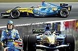 1art1 Formel 1 - Fernando Alonso, Collage 1 Poster 91 x 61