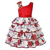 Cichic - Vestido de princesa para niña, para cumpleaños, boda, fiesta, tul, vestido formal, para dama de honor Rojo -03. 2-3 Años