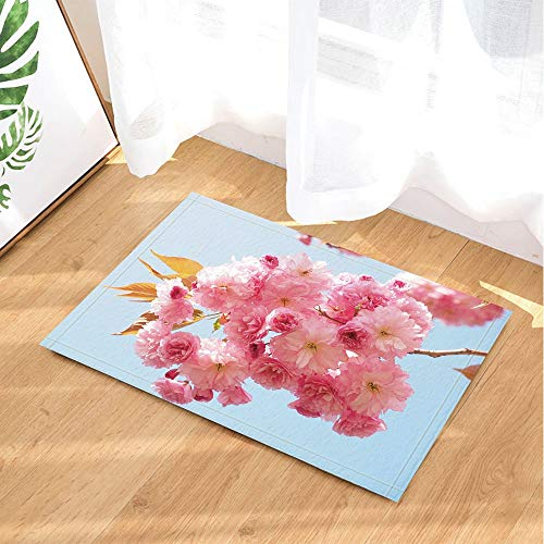 hdrjdrt NYMB - Alfombras de baño de flores de primavera para interior y puerta delantera, alfombrilla de baño para niños, 60 x 40 cm, accesorios de baño