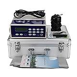 Ionisches Fußbad Detox-System, Körper-Detox-Ionen-Array-Fußbad-Spa reinigen Entgiftungsmaschine mit weitem Infrarot-Taillengurt (EU-Stecker)