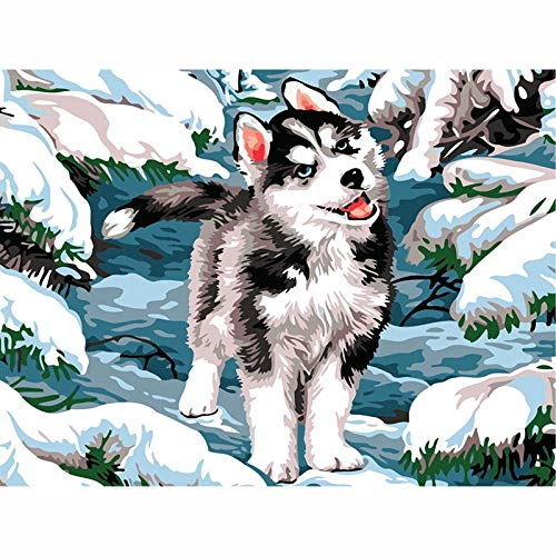 mlpnko cute dog Paint by Numbers Kits with Brushes and Acrylic Pigment DIY Canvas Painting for Adults Beginner40x50cmFrameless painting