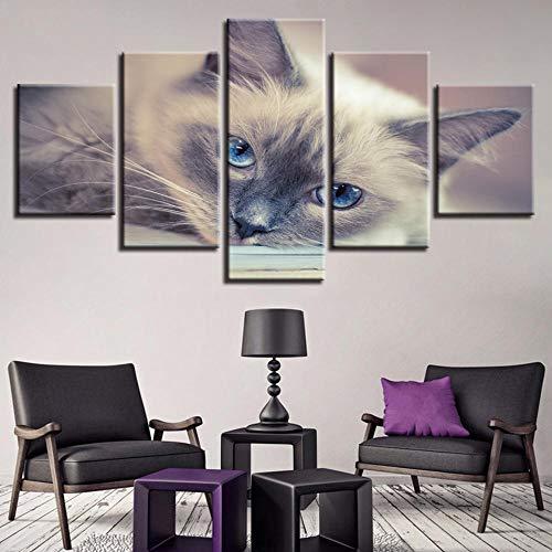 PULUKESns Quadri Moderni Stampati in HD Poster modulari Casa per Gatti 5 Pezzi Decor Astratto Tableau Scenario Wall Art Immagini di Animali Canvas