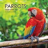 Parrots Calendar 2021: 16 Month Calendar