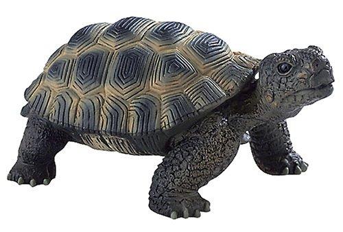 Bullyland 63553 - Spielfigur, Landschildkröte, ca. 13 cm groß, liebevoll handbemalte Figur, PVC-frei, tolles Geschenk für Jungen und Mädchen zum fantasievollen Spielen