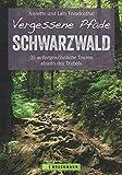Vergessene Pfade im Schwarzwald: 35 Touren abseits des Trubels - ein Wanderführer mit außergewöhnlich ruhigen Wanderungen im Schwarzwald, ... Touren...