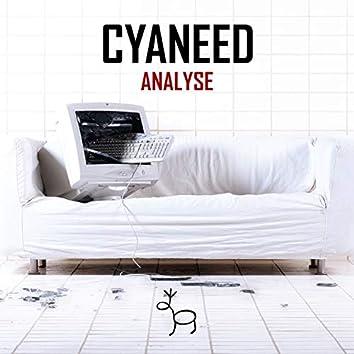Analyse - Single