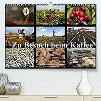 Zu Besuch beim Kaffee (Premium, hochwertiger DIN A2 Wandkalender 2022, Kunstdruck in Hochglanz): Der Kaffee-Kalender aus Brasilien (Monatskalender, 14 Seiten )