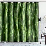 Alvaradod Cortina de Ducha de bambú,patrón de Tallos de bambú con Estampado de Fondo Inspirado en la Naturaleza Tropical,Tema de la Vida Silvestre,Verde con 12 Ganchos de plástico de 180 x 180 cm