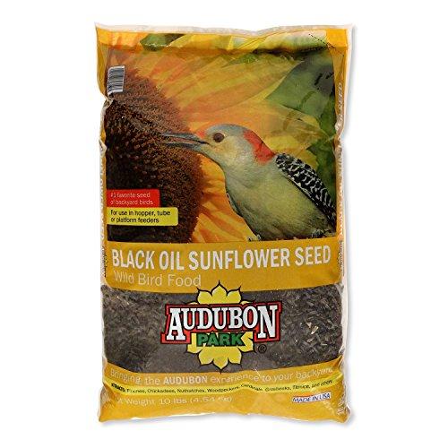 Audubon Park 12261 Black Oil Sunflower Seed Wild Bird Food, 10-Pounds