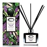 Best Diffuser Sticks - Airbreezy Lavender Scent Reed Diffuser Set with Sticks Review