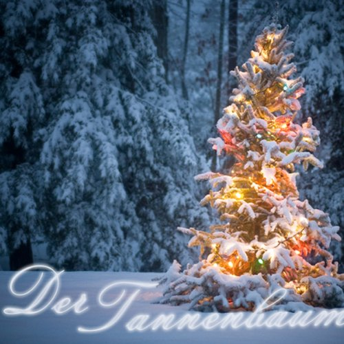 Der Tannenbaum Titelbild