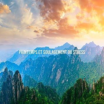 Printemps et soulagement du stress: Forêts luxuriantes, Clairières fleuries, Première pluie, Ruisseaux animés