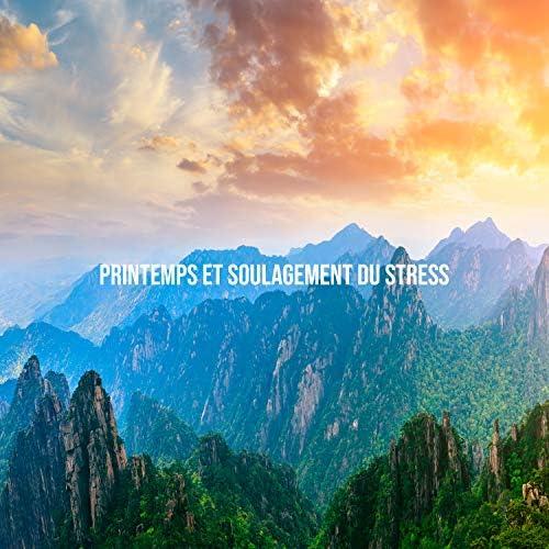 Naturel Relaxation Ambiance, Pensèe Positive Acadèmie & Relaxation mentale