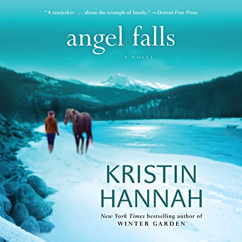 Angel Falls audiobook cover art