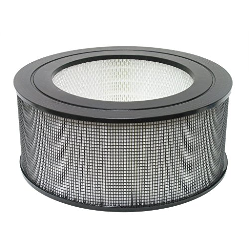 Nispira HEPA Replacement Filter Compatible with Honeywell 21500/21600 Air Purifier, 1 Filter