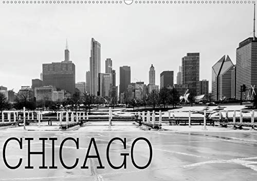 Icy Chicago (Wandkalender 2021 DIN A2 quer)