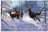 APAZSH Posters para Pared Póster de Animales, póster de Arte de Lienzo de Ciervo y Poster de Decoracion de impresión de Cuadros artísticas de Pared 60x90cm x1 Sin Marco