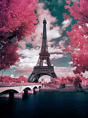 DIY 5D Pintura diamante por Kit, Torre eiffel Diamond Painting taladro completo diamante bordado Dotz Kit Home Wall Decor-30cm * 40cm Rosa París