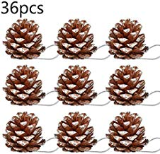 Sentovac 36Pcs Christmas Hanging Pine Cone Ornaments Tree Ornaments Party Supplies Pine Cones Pendant with String Natural Wood Decoration Crafts Home Ornament(Snow)