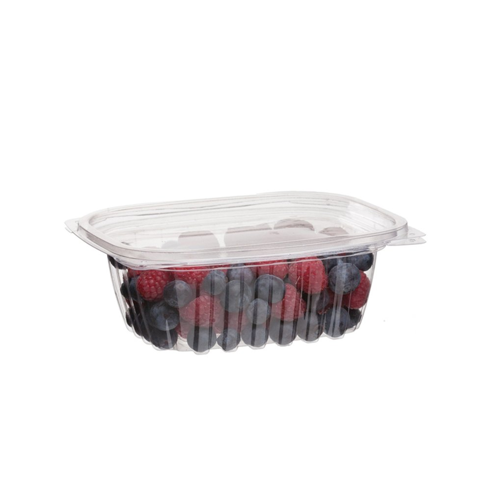 Eco-Products 5% OFF - Challenge the lowest price of Japan ☆ Renewable Compostable Containe Deli Rectangular