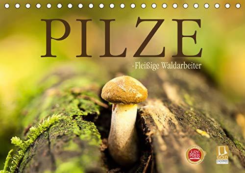 Pilze - fleißige Waldarbeiter (Tischkalender 2021 DIN A5 quer)