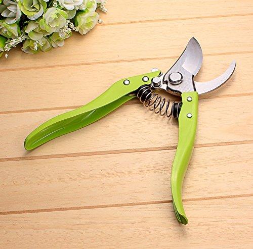 Beishuo professionnel en acier inoxydable bonsaï Sécateur, Bud et feuille Rogneuse Sécateur Jardin outils de coupe d'élagage met en œuvre