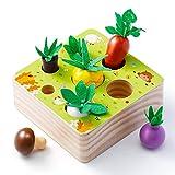 Babyhelen Juguetes Montessori, Juguetes de Madera Niños Juego de Clasificación Rompecabezas Juguetes Educativos Regalo Bebe de Cumpleaños