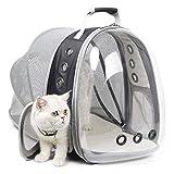 Sac à dos extensible pour chat, sac à dos pour petit chien, randonnée, voyage, camping