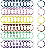 INTVN 60 Pezzi Portachiavi in Colorato, Portachiavi in Metallo Colorato Rilegatura Libri Anelli Rilegatura Metallo per Album/Album/Artigianato