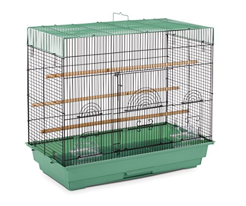 Prevue Pet Products SP1804-4 Flight Cage, Green/Black