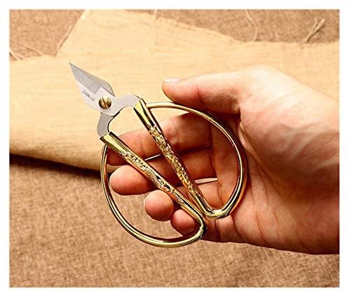 JINSUOZY DXXLD Tijeras de Costura de Costura de Acero Inoxidable Cortador Corto Durable Vintage Bordado Tijeras Tijeras Tela Cutter Craft Herramienta para Coser (Color : 4.8inch 12.5X8.3CM)