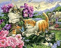 番号でペイント猫と蝶大人と子供のための番号でDIY絵画事前に印刷されたキャンバス油絵40x50cmフレームレス