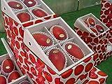 沖縄県産 紅マンゴー (秀品)2kg(3~5個)